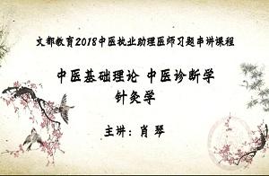 文都教育2018中医执业助理医师习题串讲1