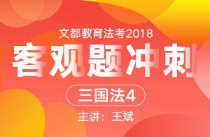 文都教育法考2018法考客观题冲刺(王斌)2